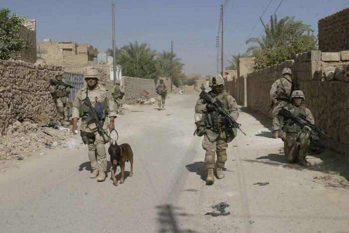 U.S. Marines, a K9, and Iraqi soldiers on patrol through Barwana streets.