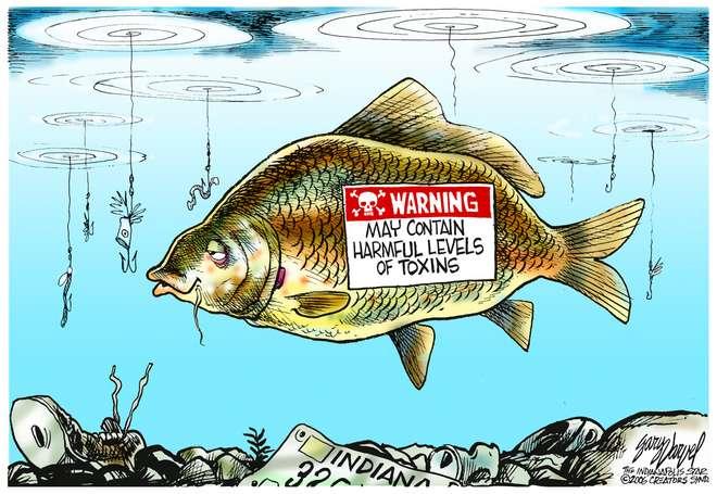 Editorial Cartoons by Gary Varvel - gv0608c - 08 June 2006