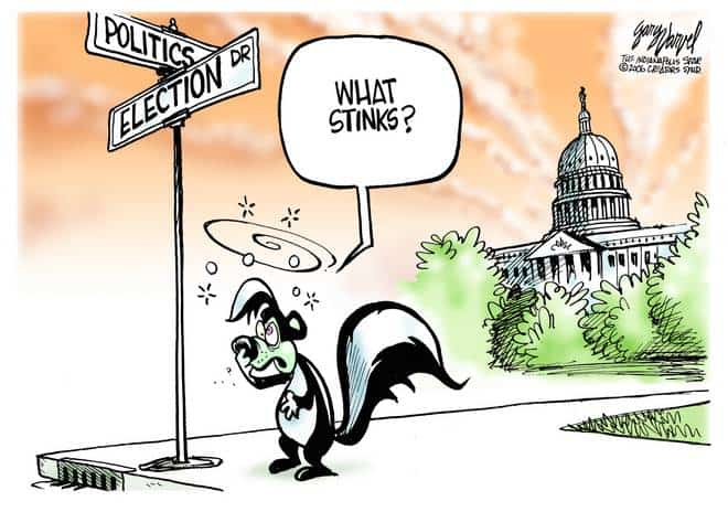 In Washington D.C. Around Election Time, Things Are So Stinky The Skunks Move Out