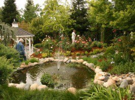 Asian accent Japanese garden in Folsom with maple trees, charming lanterns, and garden art.