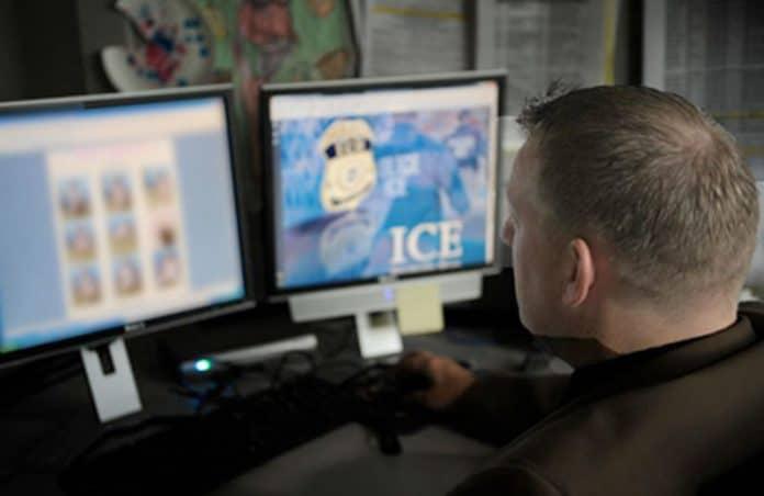 ice stops human trafficking