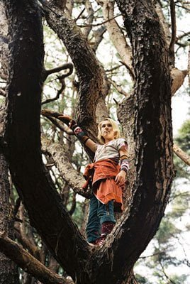 In the forest of Terabithia.