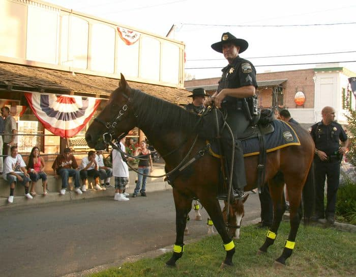 Mounted police keeping us safe at the Thursday Night Market.