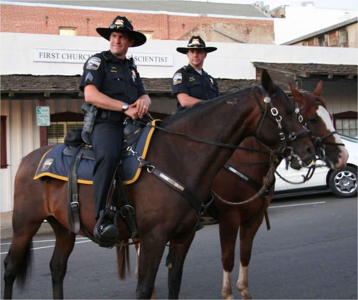 We're always pleased to see the mounted police at the market.