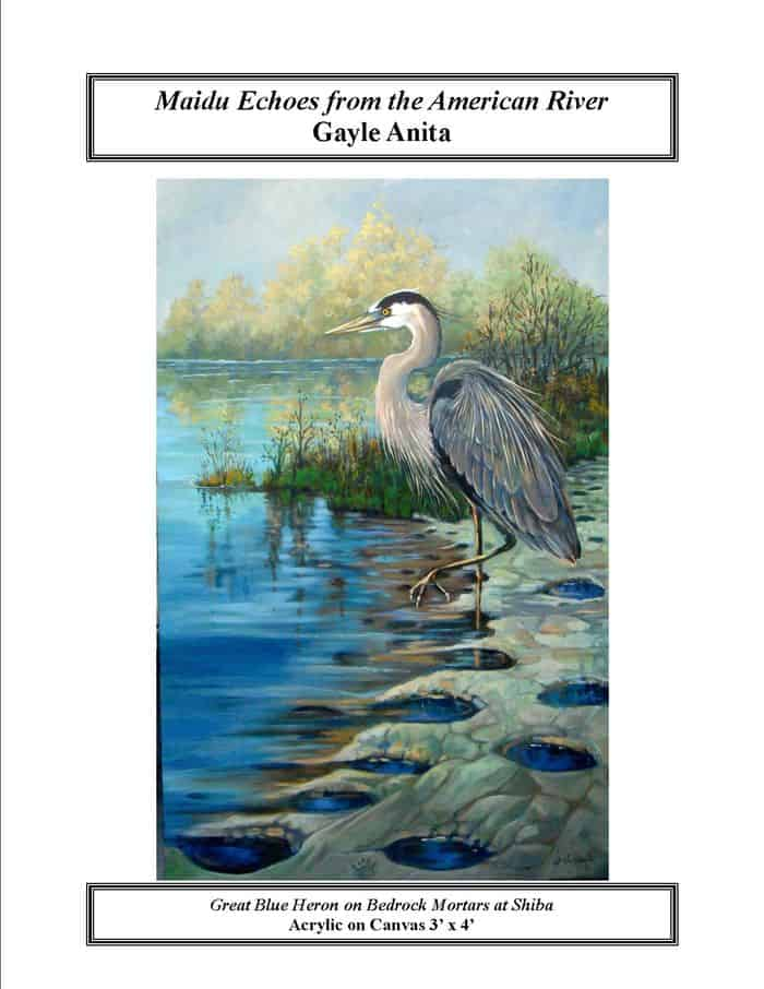 Anita Blue Heron Maidu Echoes from the American River. By Gayle Anita.