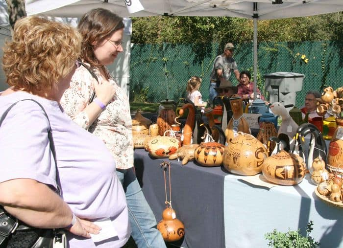 Still life artist and her work at Folsom Gourd and Arts Festival.