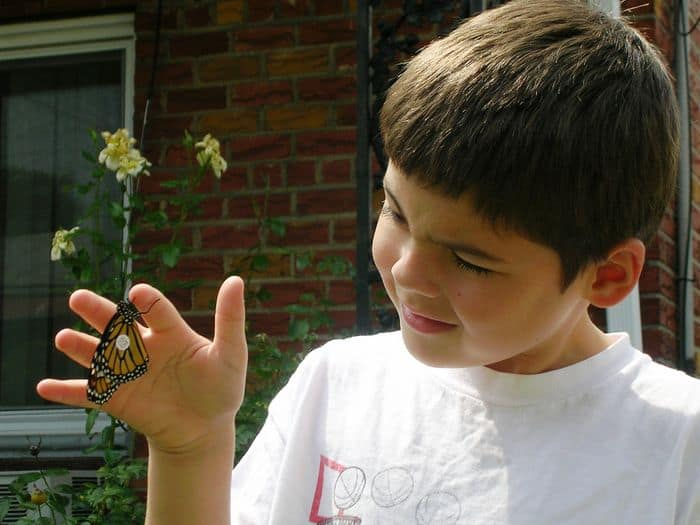 Clark with tagged Monarch