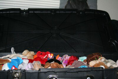 Amy Hammonds receives a shipment of Beanie Babies.