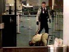 Screenshot from video taken by Paul Pritchard showing Robert Dziekanski shortly after being tasered by RCMP officers at Vancouver airport.