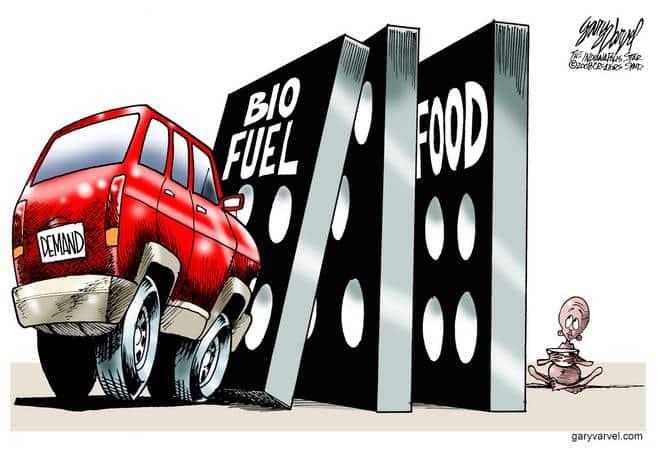 Editorial Cartoons by Gary Varvel - gv20080502cd - 02 May 2008