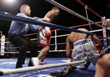 HoltTorresKnockout