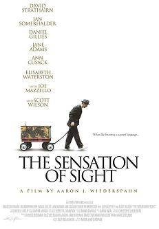 The Sensation of Sight Movie