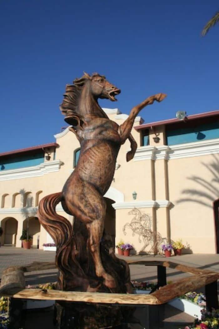 Phoenix, the Freedom Horse