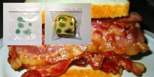 baconbag