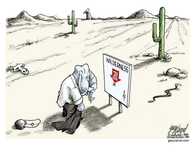 Editorial Cartoons by Gary Varvel - gv20081117cd - 17 November 2008