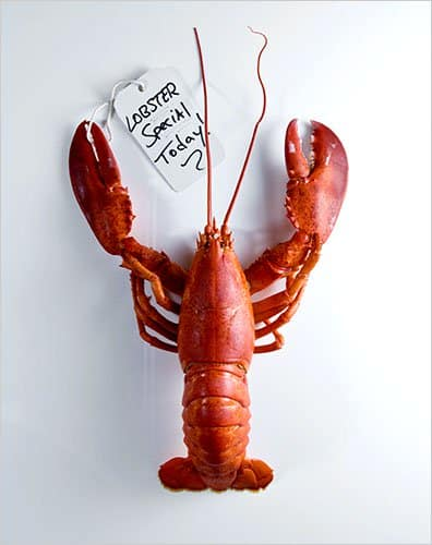 lobster sale