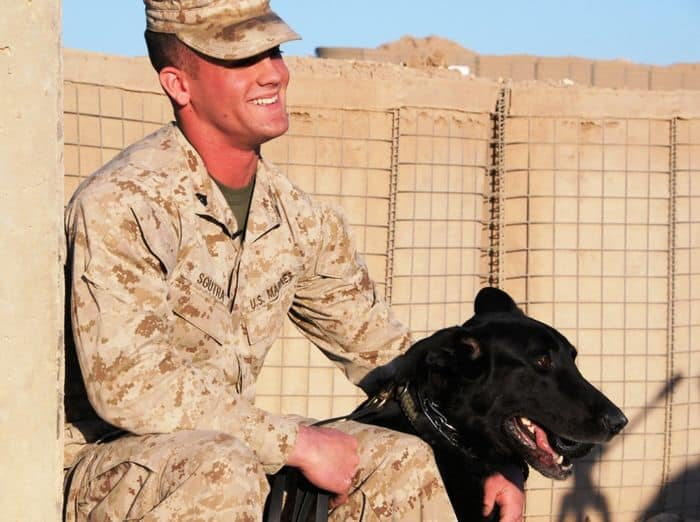 Marine Sgt. Posha, an explosive detection dog, sits with his partner, Marine Cpl. William Soutra, military working dog handler, Security Battalion, based out of Camp Pendleton, Calif., and attached to STB, 2nd BCT, 4ID, after a training demonstration at Camp Echo.