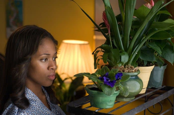 Nicole Beharie as Dee Roberts in AMERICAN VIOLET