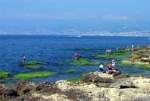 LebanonNo17Image 96