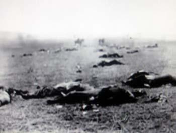 fallen dead at Shiloh