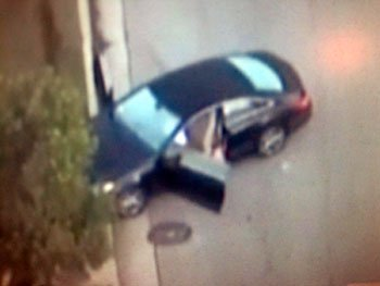 ronni chasen car crash birdseye