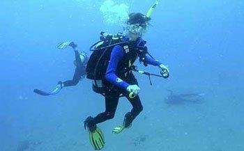 tina watson ocean floor