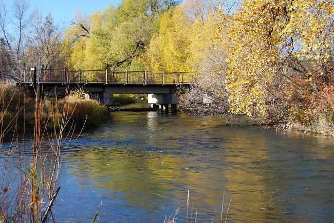 Bridge, Lewist