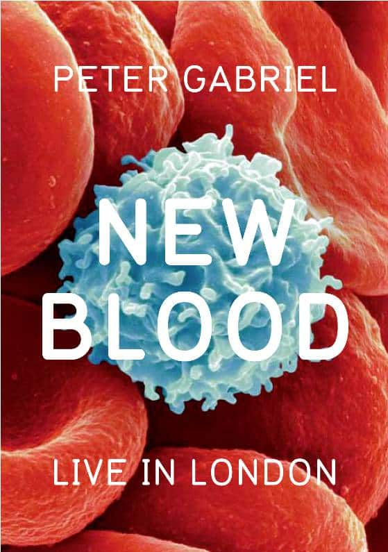 peter gabriel new blood