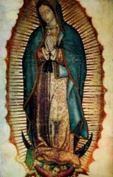 virgin of the guadalupe