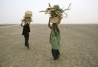 mali Humanitarian Crisis