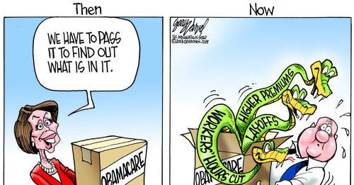 Thank You Nancy Pelosi, You Passed Obamacare, Now We Knows It Is Vicious!