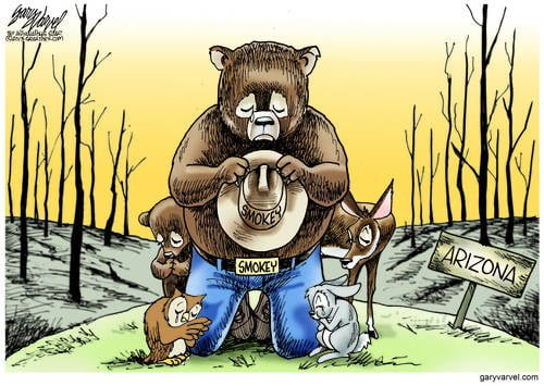 Smokey Mourns Missing Friends Who Gave Their All For Others