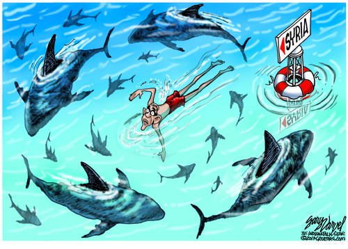 Obama Channels Diana Nyad, Swimming With The Sharks Without A Cage