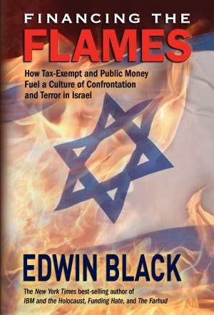 The book Financing The Flames: