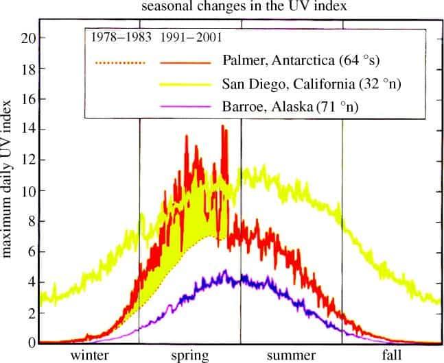 Seasonal changes in UV index