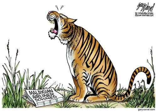 Sadness For The Malaysian Tiger, As Another Airliner Goes Down