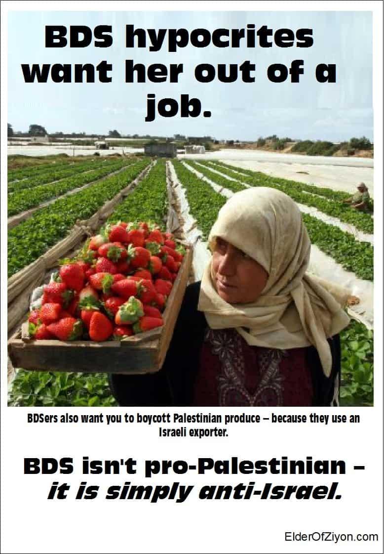 bds hypocrites