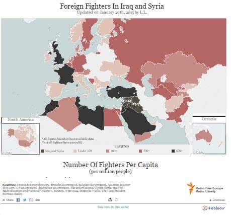 Syria foreignFighters Jan14 GS