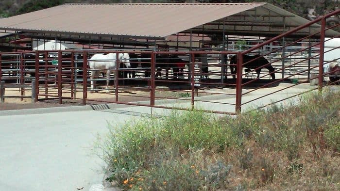 Holman Ranch stables