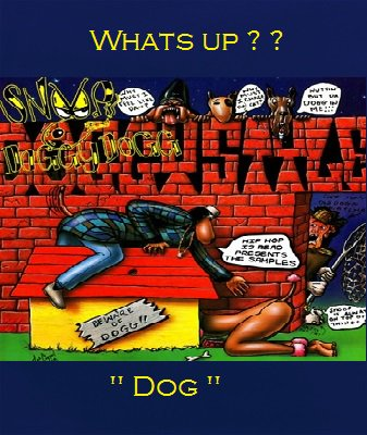 Doggystyle album by Snoop Dogg.
