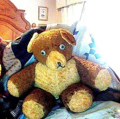 potsy the bear