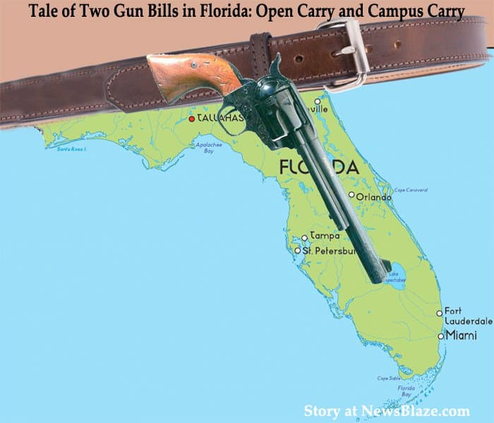 florida open carry bills