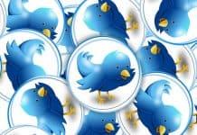 twitter tweets.