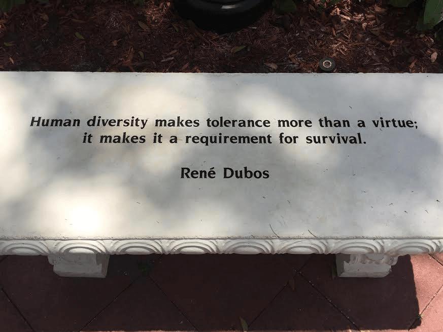 Tolerance bench