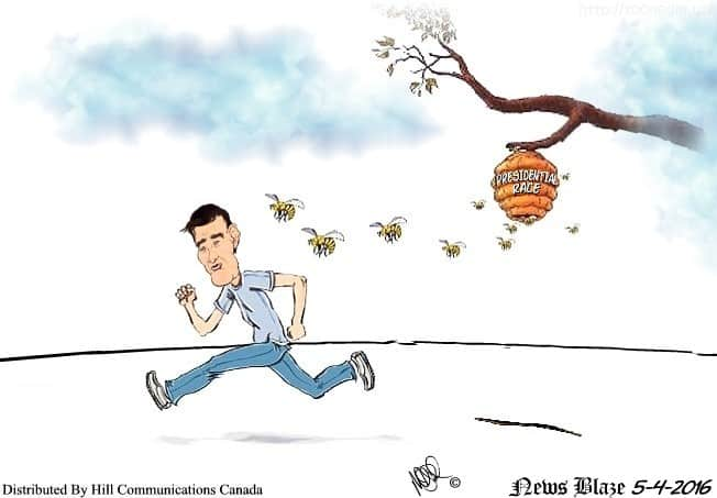 Chased off by bees in presidential race.
