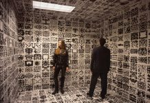 installation by David DiMichele