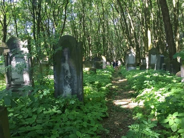 Graves along the cemetery path.