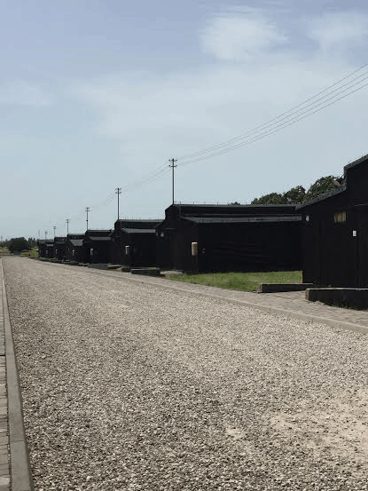 Majdanek - the commercial barracks' row.