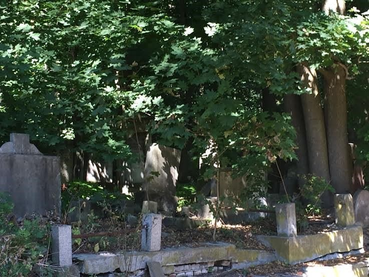 Graves in the forest.