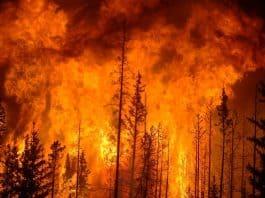 Summer Heat Triggers Wildfires. youtube screenshot.